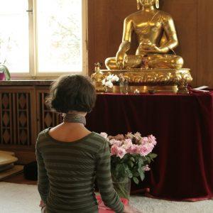 Открытие центра медитации традиционного тибетского буддизма в Могилеве!